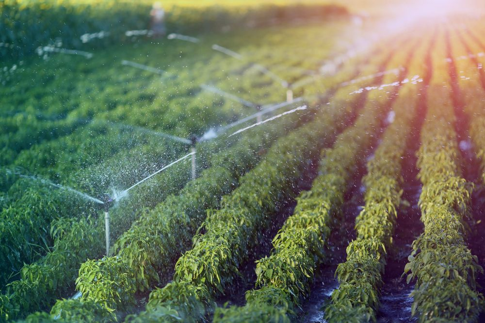 IoT soil condition monitoring sensors will optimize agriculture through data