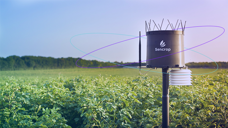 The agricultural benefits of weather conditions monitoring sensors