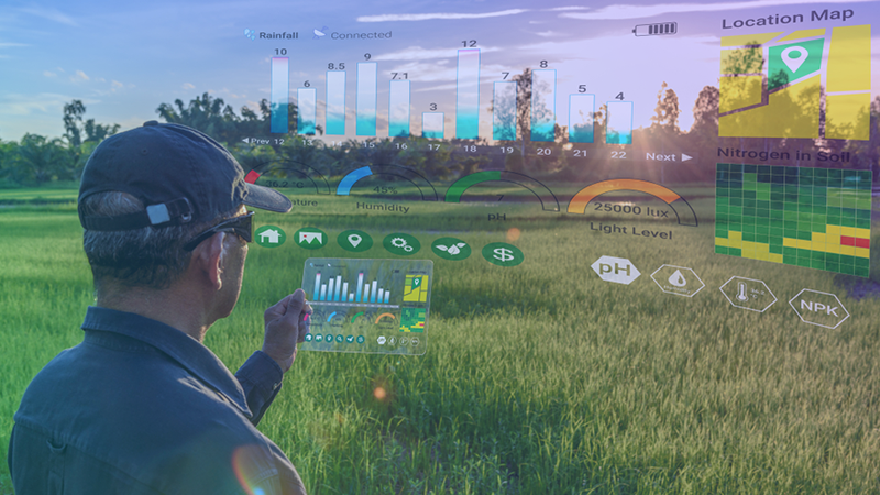 Smart farming with IoT, futuristic agriculture concept : Farmer wears VR or AR glasses while monitoring rainfall, temeprature, humidity, soil pH with immersive experience on digital holographic screen