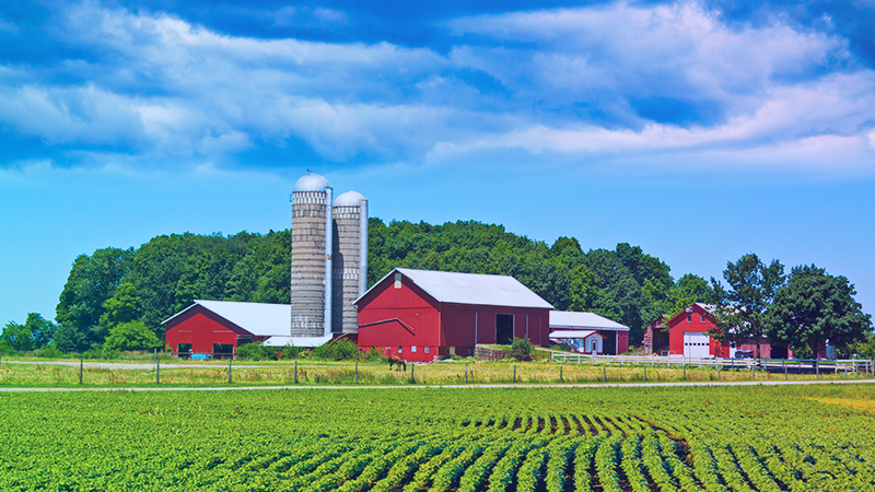 Farms get smarter with IoT storage monitoring