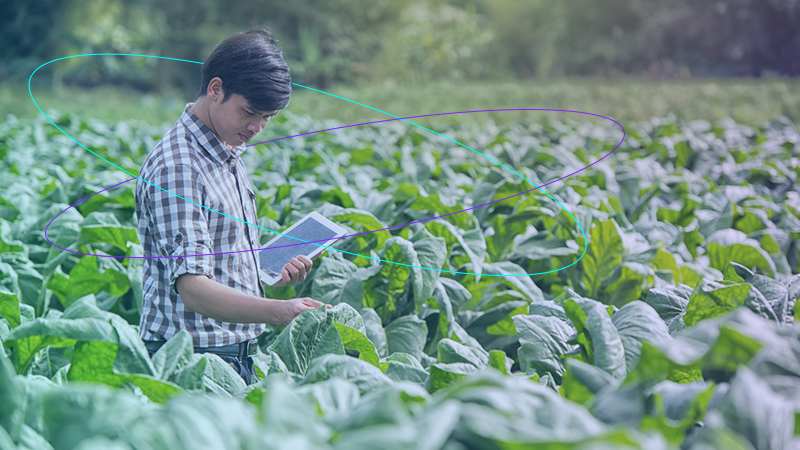 The Data You Need to Grow More Productive Crops